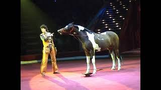 Yakubovskie.ru Comic Cowboy Horse Moscow Circus, Цирковой номер Комический Ковбой Якубовские