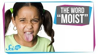 Why We Hate the Word 'Moist'