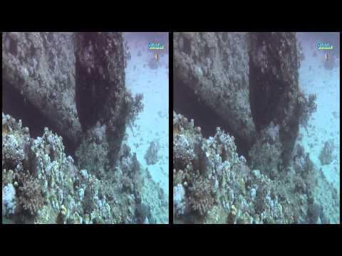 Meer - Wrack der Carnatic - Abu Nuhas - 3D - 2011      - YouTube