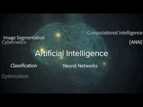 Experts Discuss Evolutionary Algorithms and the Future of AI