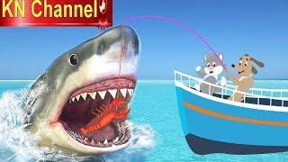 Hoạt hình KN Channel MÈO VÀ CHÓ CÂU CÁ MẬP BỊ VUA HẢI TẶC PHÁ TÀU