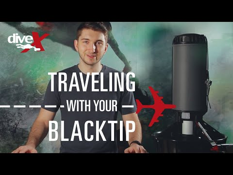 Traveling with the Blacktip