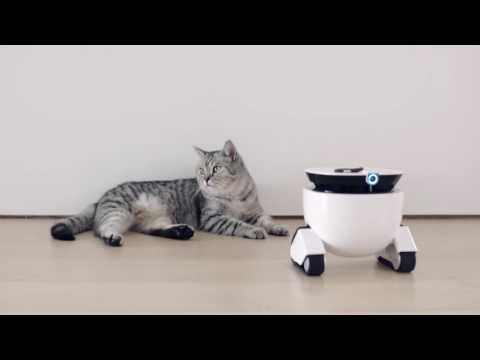 Roboming Announces the Launch of Their New Product: A Personal Robot for Home Assistance, Monitor and Fun
