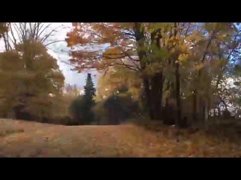 NH Backroad Foliage