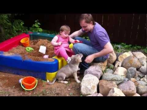 Лето 2011 Ника + собачка