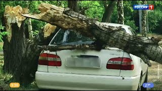 В Омске ураган повалил деревья