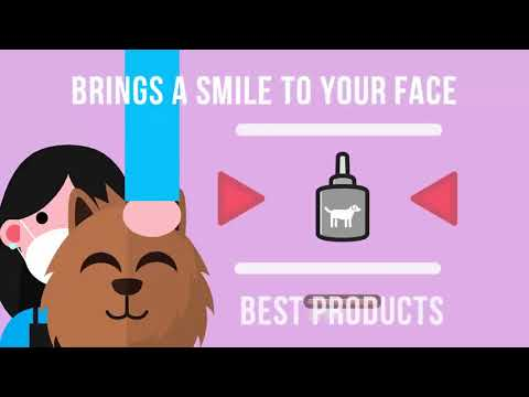 The Best Dog Grooming in Canberra, Call Now! (02) 6190 7918