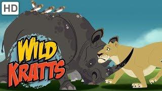 Wild Kratts - Best Season 1 Moments! (Part 9)   Kids Videos