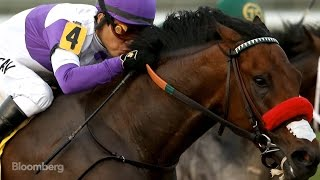 Meet the $100M Superhorse Powering the Kentucky Derby