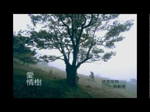 Z-Chen 張智成 - 愛情樹