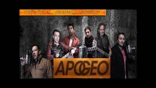 Mix elefante en vivo By Apogeo