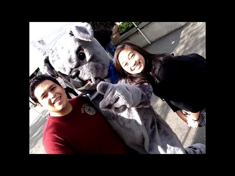 Bellevue College Mascot Brutus the Bulldog
