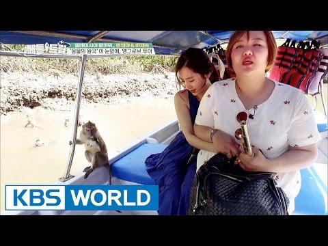 The mangrove tour, the kingdom of animals [Battle Trip / 2017.05.14]
