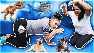 ANIMAL IMPRESSION CHALLENGE!!