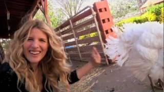 Kate Talks Turkey at Animal Acres