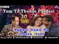Aawara Hawa Ka Jhonka Hoon