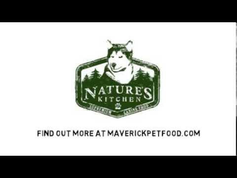 Most Dog Foods Suck
