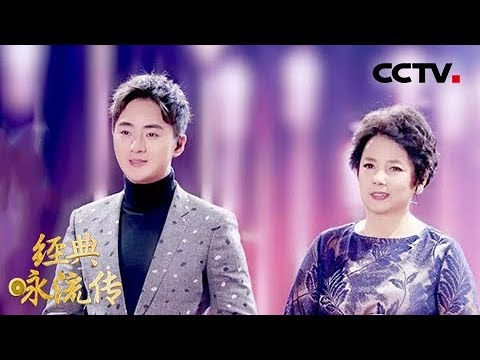 [经典咏流传]陈力、余少群为你唱经典《枉凝眉》 | CCTV