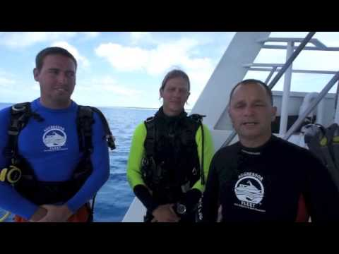 SSI Open Water Scuba Dive Certification in 3 minutes