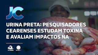 Urina Preta: pesquisadores cearenses estudam toxina e avaliam impactos na saúde