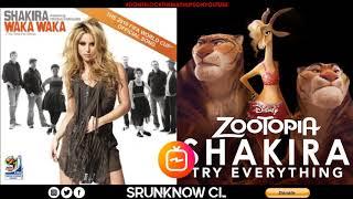 Shakira - Waka Waka (This Time for Africa) / Try Everything (Mashup)