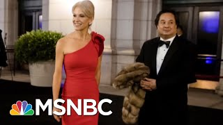 The Bizarre World Of Kellyanne Conway & George Conway | Deadline | MSNBC