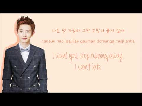 EXO-K - Let Out the Beast (Color Coded Hangul/Rom/Eng Lyrics)