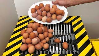 EXPERIMENT Shredding 300 eggs