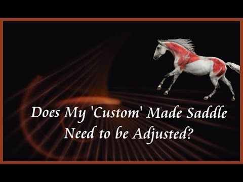 Does My CUSTOM SADDLE Need to be Adjusted - Courtesy Saddlefit 4 Life