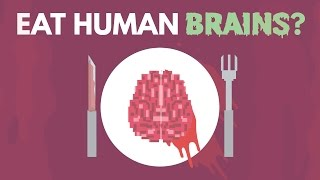 What Happens If You Eat Human Brains?