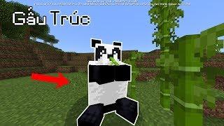 5 Điều Bí Ẩn Mà Bạn Ít Khi Để Ý Khi Chơi Minecraft - Gấu Trúc Xuất Hiện ???