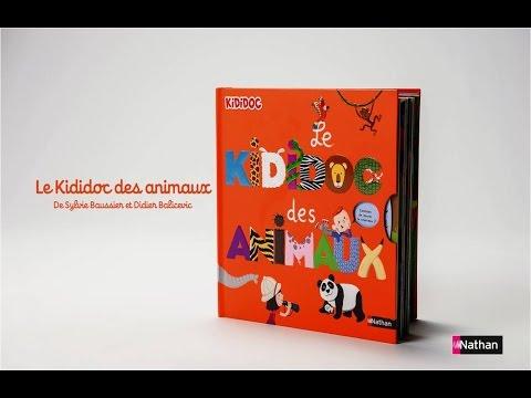 Vidéo de Sylvie Baussier
