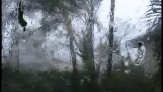Hurricane Wilma North Lauderdale 2005