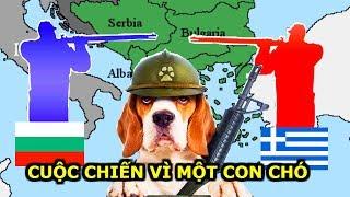 Kỳ Lạ Cuộc Chiến Tranh Bắt Nguồn Từ Một Con Chó