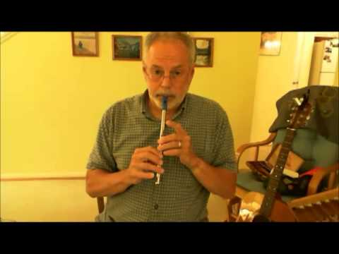 Twelve different pennywhistle models you can play