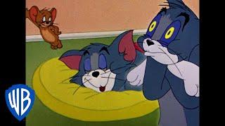 Tom a Jerry - Domov