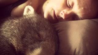 The Worlds Happiest Wombat - Sammy Simon
