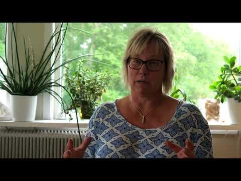Behöver Sverige fortfarande en sär-skild skola? (Almedalen 2018)