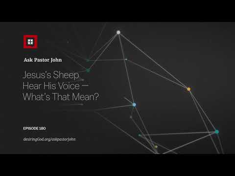 Jesus's Sheep Hear His Voice — What's That Mean? // Ask Pastor John