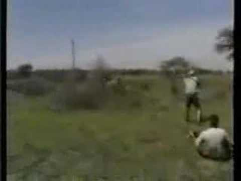 Охота на льва. Сафари. Африка
