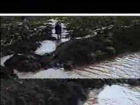 Spate Irrigation Ethiopia