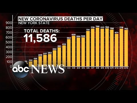 Death toll rises as New York flattens COVID-19 curve | WNT