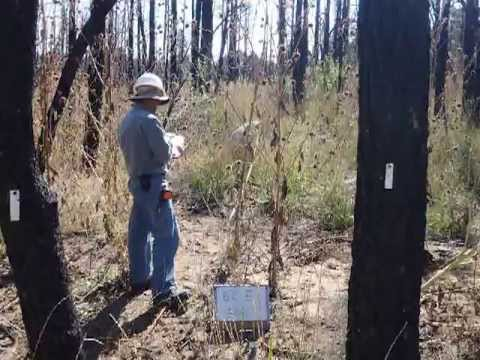 Estancia Basin Watershed Monitoring