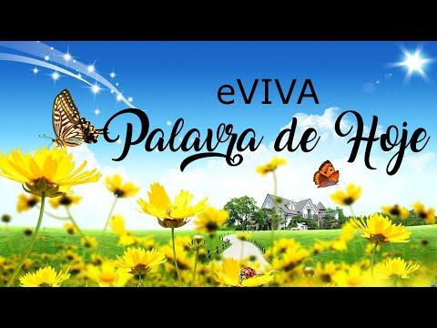 PALAVRA DE HOJE 15 DE FEVEREIRO eVIVA MENSAGEM MOTIVACIONAL PARA REFLEXÃO DE VIDA - BOM DIA!