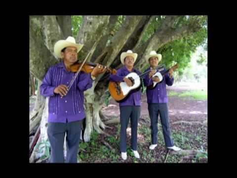 La pasión - Camperos de Valles y los Leones de la sierra de Xichú     (Sólo audio)