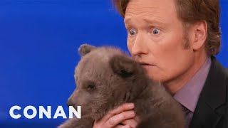 Animal Expert David Mizejewski: Brown Bear Cub & Baby Alligator - CONAN on TBS