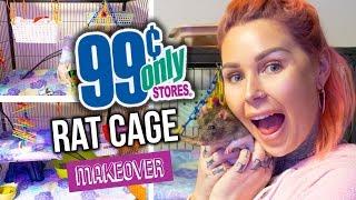 .99 Cent Store RAT CAGE DIY MAKEOVER | KristenLeannimal