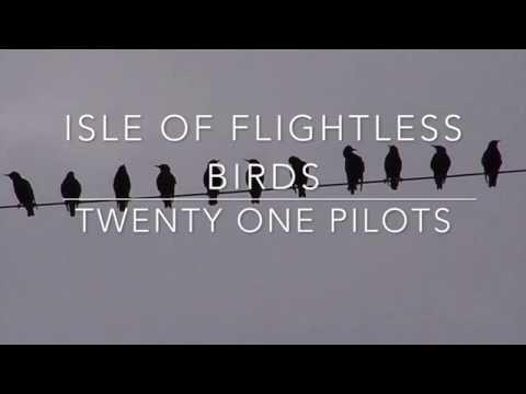 Isle Of Flightless Birds