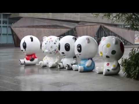 UNDP's Global Goals Champions meet the Panda Ambassadors (Chinese subtitles)