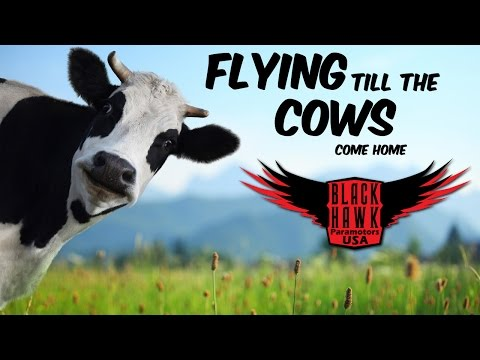 In Search of Lost Cattle on BlackHawk Paramotor Ranch! NEW Adventure!
